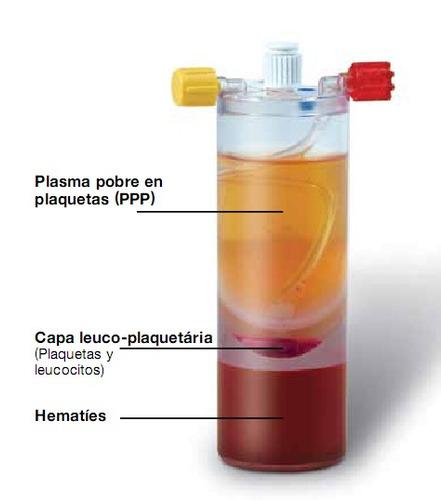 curso master de plasma rico en plaquetas y plasma gel