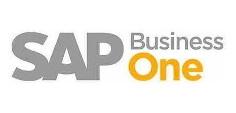 curso sap business one / finanzas