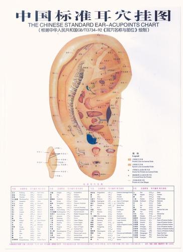 curso taller de auriculoterapia en poster