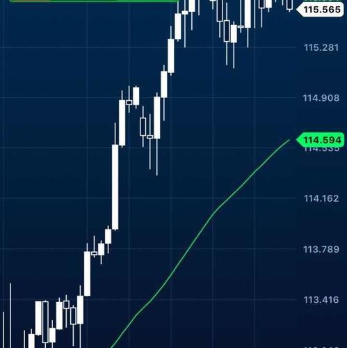curso trader b3