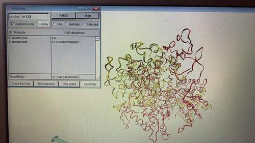 cursos acoplamiento molecular, inmunoinformatica