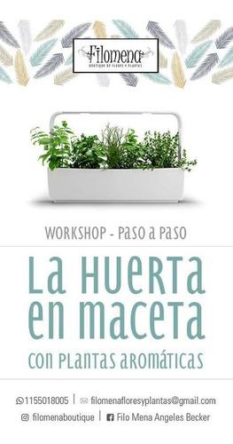 curso/workshop  la huerta en maceta