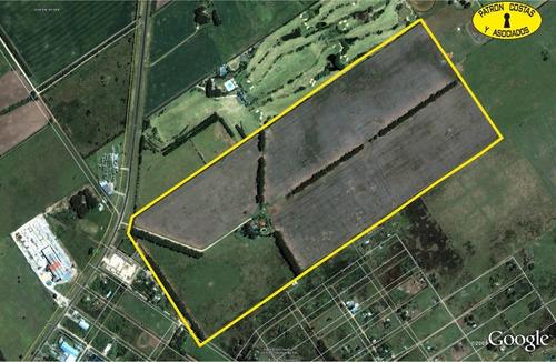cv-ca-ba-1078-h venta campo 71 has. con casa y pileta pilar