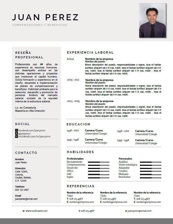 Cv Curriculum Vitae Profesional Conservador Para Word 49 00 En