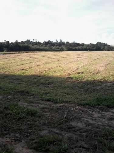 d terrenos 1000m² chacarras 100%plainos por apenas 45 mil