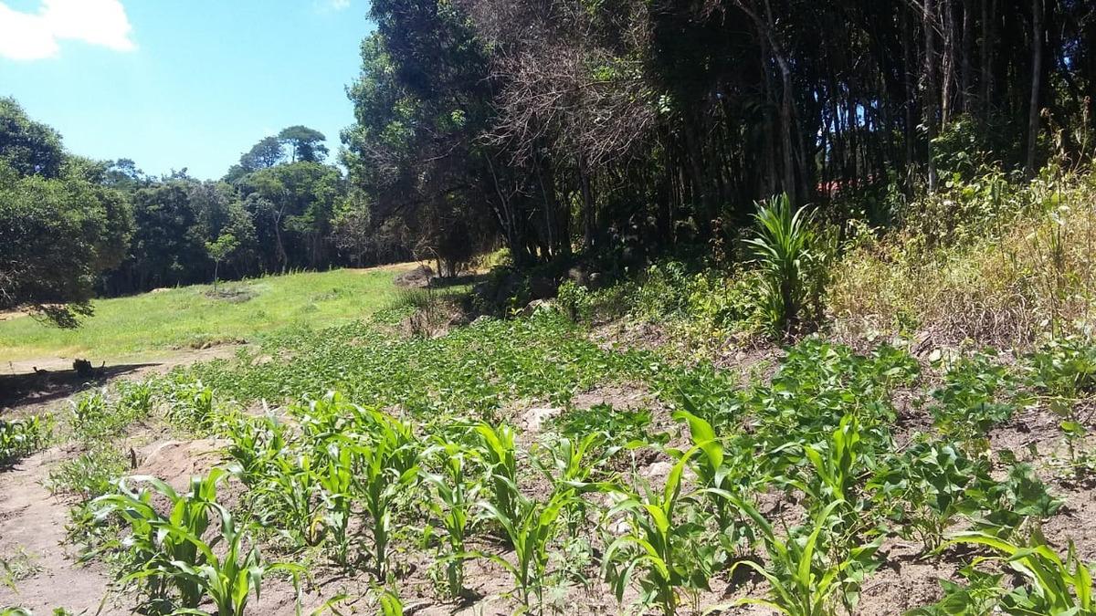 d terrenos em ibiúna rodeado pela natureza de 1000m