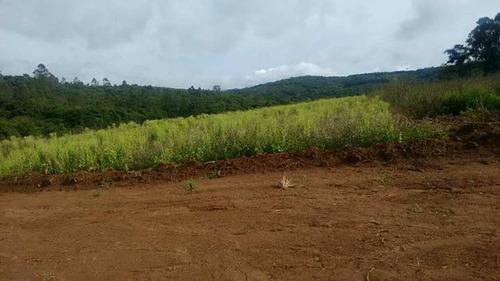 d terrenos plainos de 1000 m² limpo e plaino ligue já