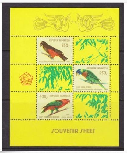 dams indonésia papagaios aves pássaros fauna