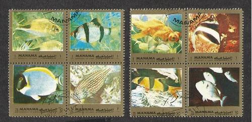 dams - manama - fauna peixes - carimbados