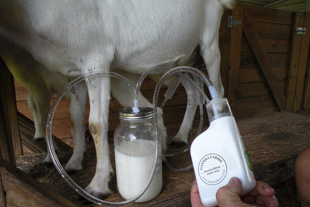 Dansha Farms Orde 241 Adora Recargable Leche Vaca Oveja Cabra