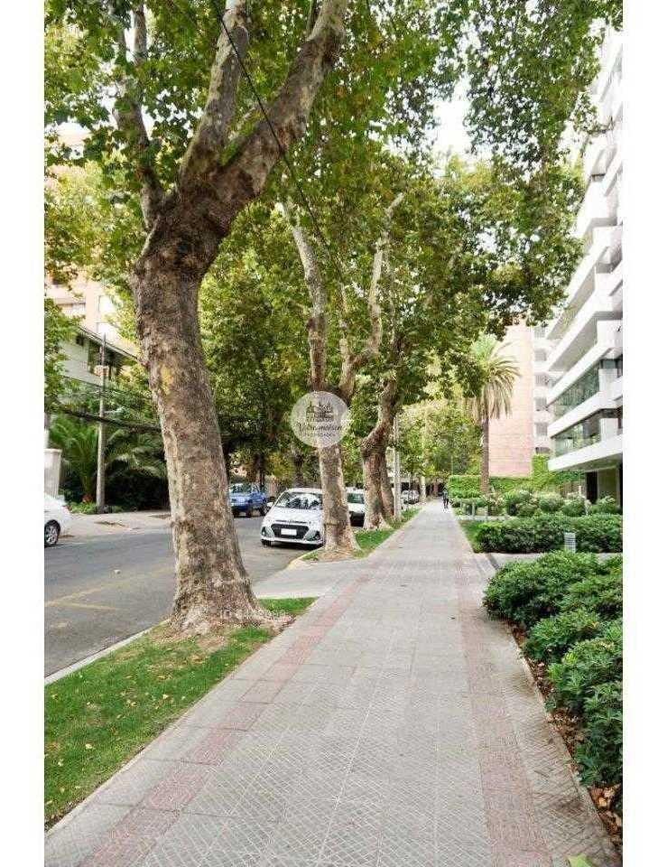 dario urzua - avenida ricardo lyon