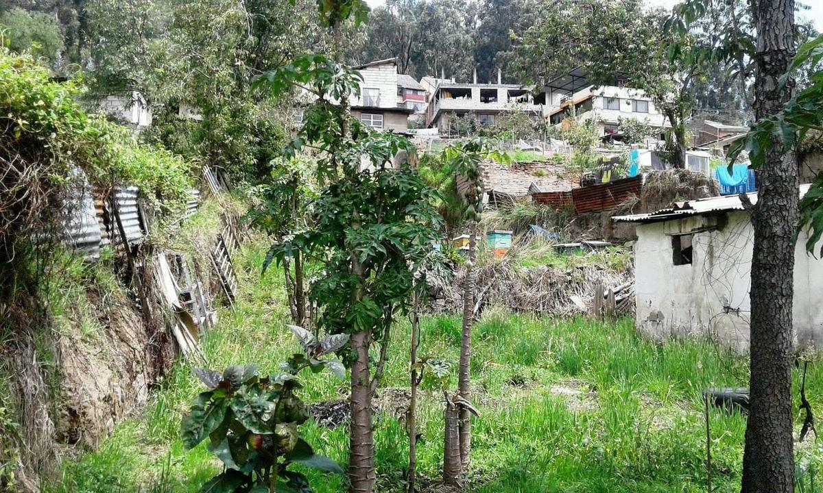 de oportunidad venta de terreno, casa y local  gral necochea
