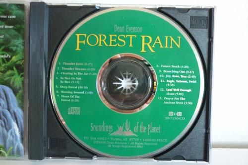 dean evenson forest rain  relajacion meditacion