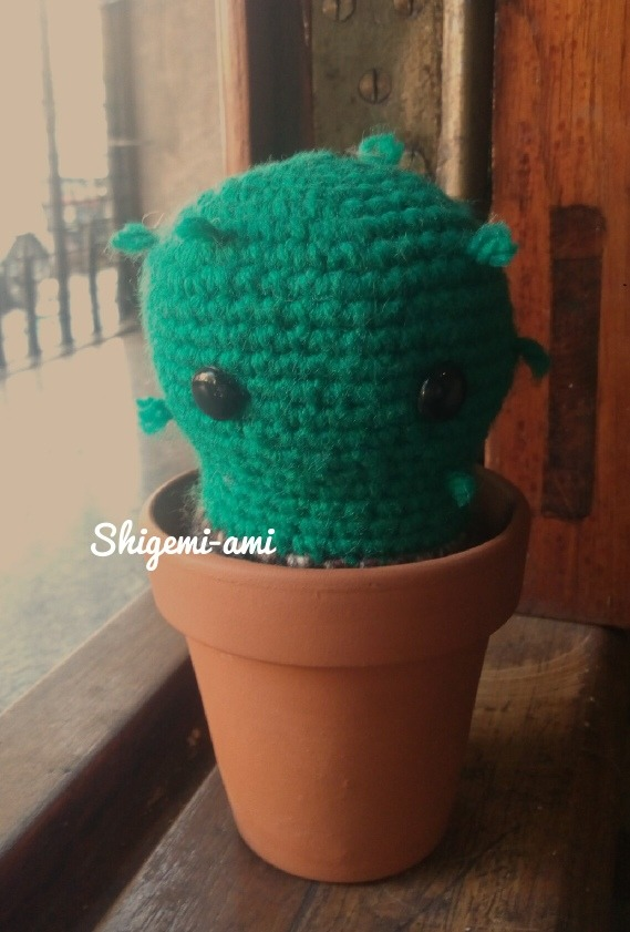 Crochet Cactus Amigurumi Cactus Kawaii Cactus Crochet | Etsy | 841x569