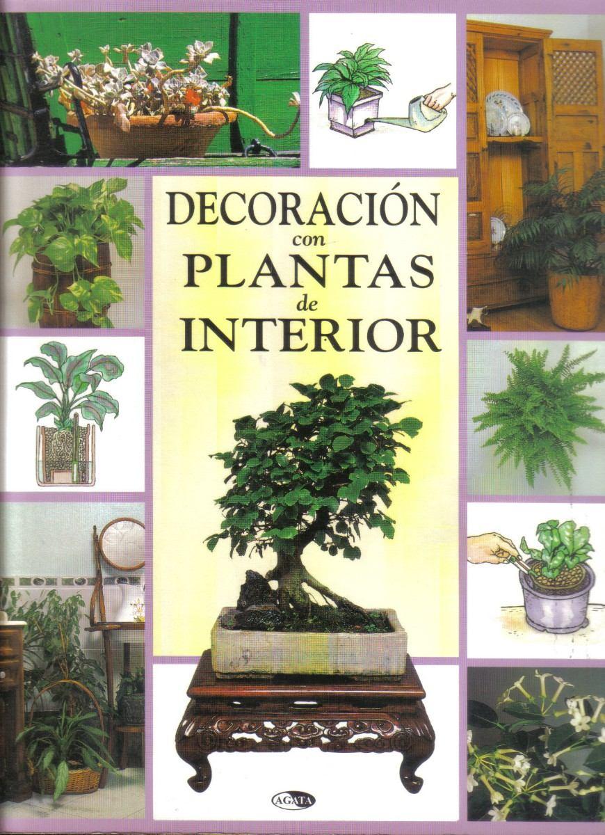 Plantas de interior decoracion casa aire palermo plantas for Decoracion plantas interior