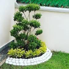 decoración, reparación y mantenimiento de jardines