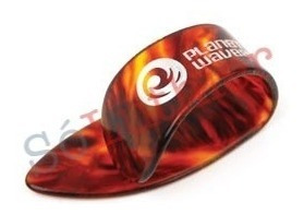 dedeira shell | large | planet waves