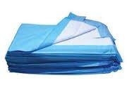 deluxe perrito de formación almohadillas absorbentes 2x 300