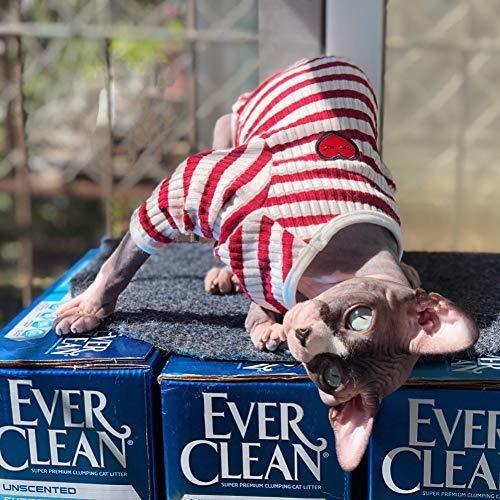 dentrun chaleco sin pelo para gatos camisa ropa de gato a ra