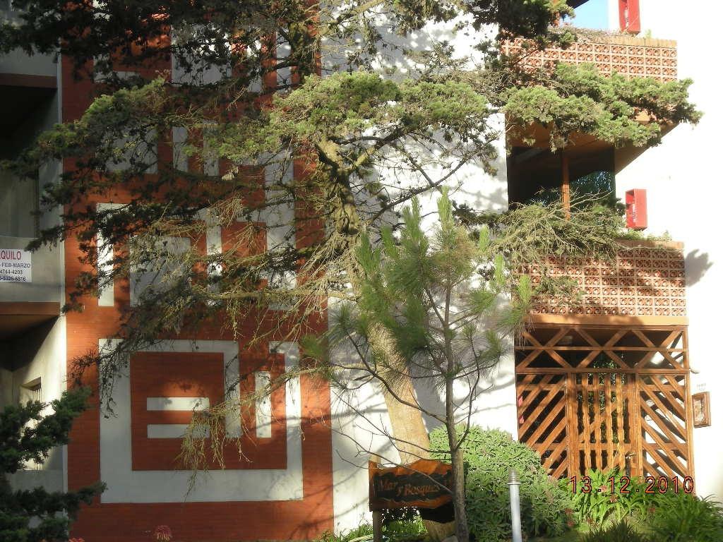 departamento 2 amb. barrio norte frente bosque gesell.