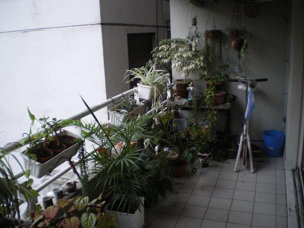 departamento 3 ambientes-balcón aterrazado-excelente ubicación