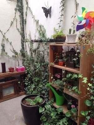 departamento amueblado planta baja con terraza