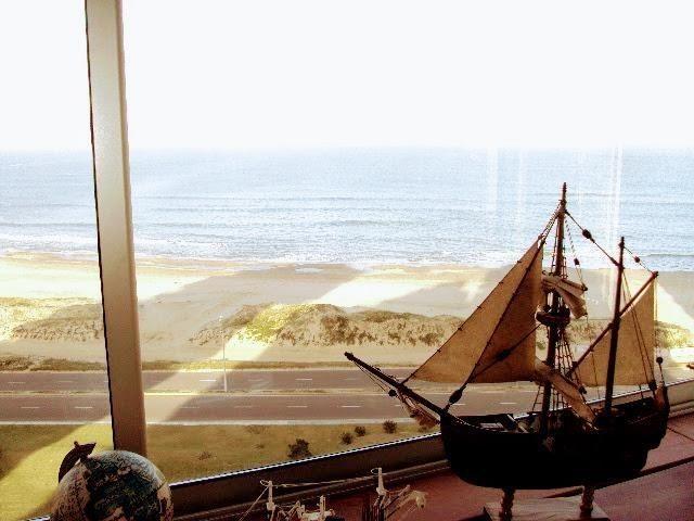 departamento en alquiler en playa brava