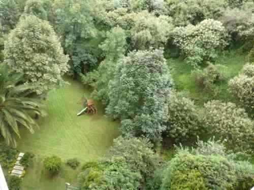 departamento en bosques de las lomas, bosque de tabachines