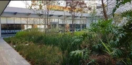 departamento en renta en central park bosque real