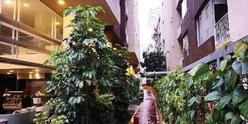 departamento en venta en coyoacan santa ursula coapa, departamento en venta tres recamaras. elevador