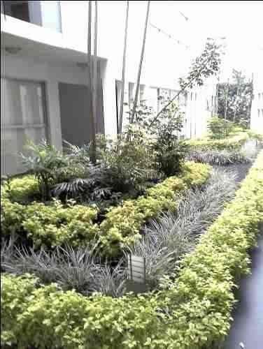 departamento en venta, jardines del pedregal