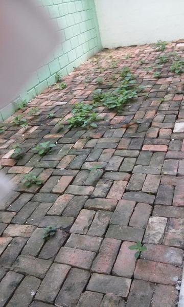 departamento en venta tampico jardines de champayan (2)