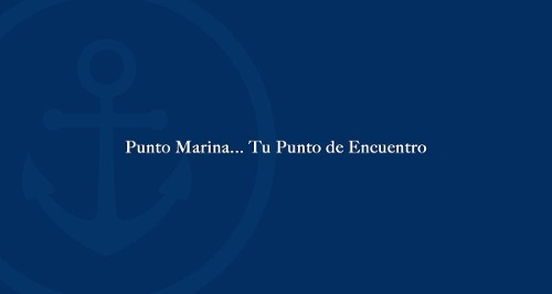 departamento - fraccionamiento marina mazatlán