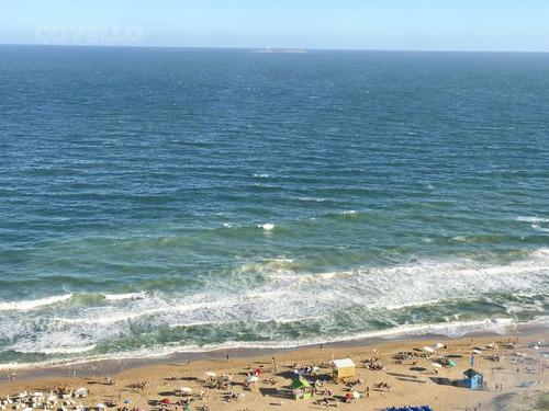 departamento - playa brava