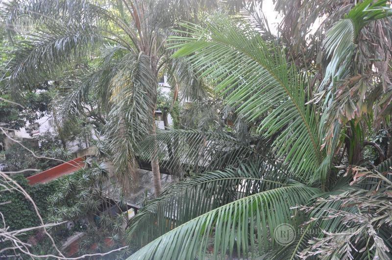 departamento reciclado - zona botanico - palermo - 4dorm   dep