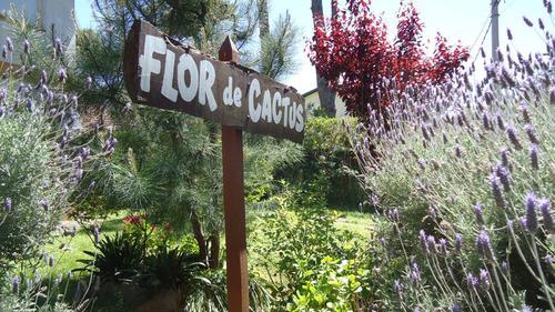 departamentos 2 ambientes flor de cactus