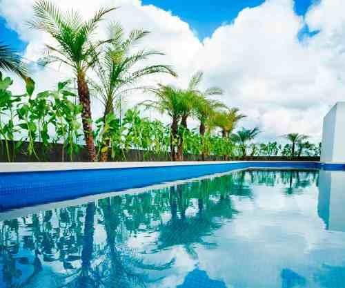 departamentos opal suites playa del carmen retorno inversión