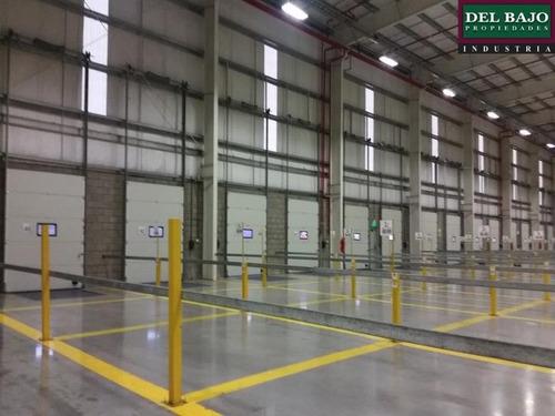 depósito 5.000 m2 - tortuguitas
