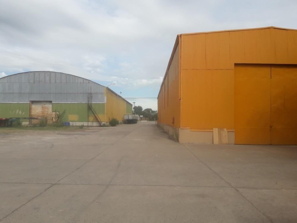 deposito de 2500 m2 en predio cerrado.
