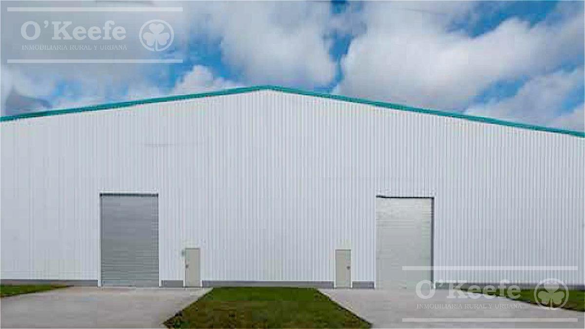 deposito industrial en alquiler 1125 m2 parque industrial canning