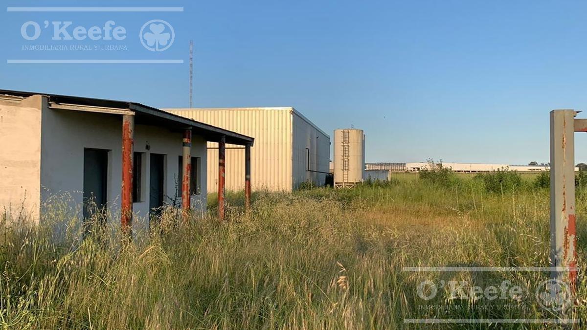 deposito industrial en venta en florencio varela zona sur - oportunidad!!