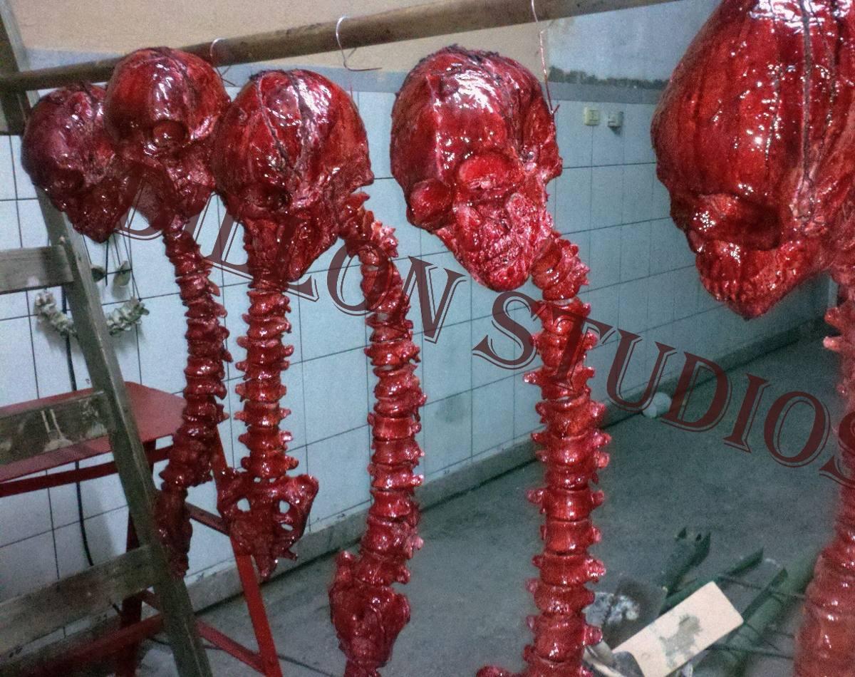Depredador Columna Vertebral Humana - $ 1.300,00 en Mercado Libre