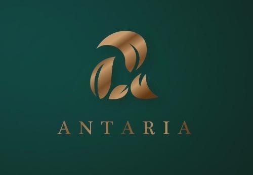 desarrollo de terrenos de inversión antaria