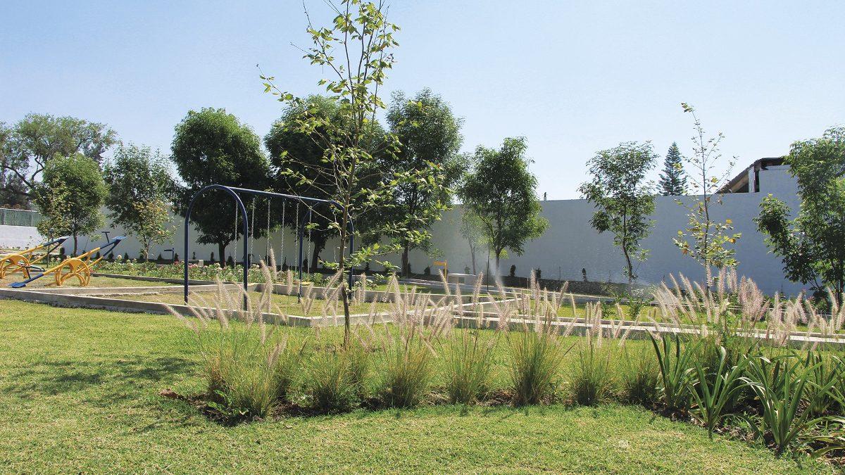 desarrollo parque guadalupe