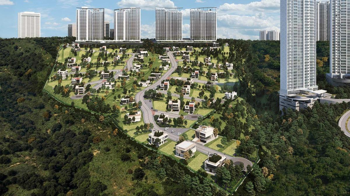 desarrollo terrenos by bosque real