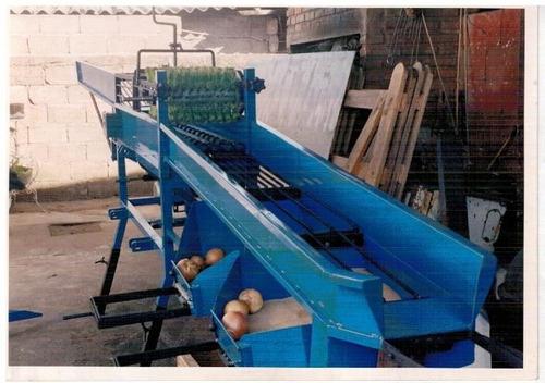 descoladora clasificadora cosechadora de cebolla