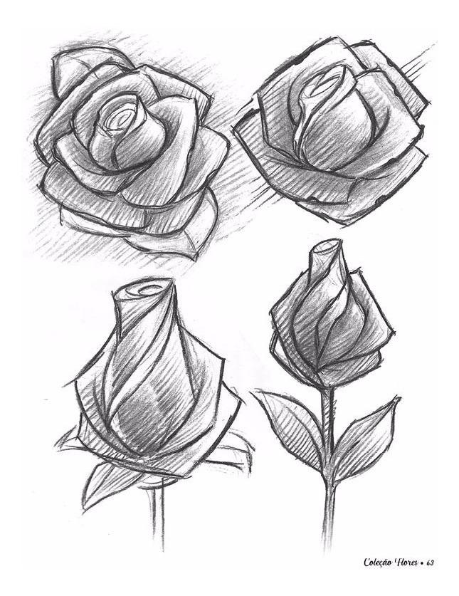 Flores Desenho Romes Danapardaz Co