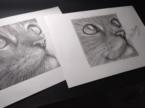 desenho realista