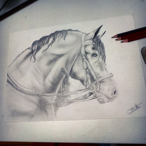 desenho realista/fotos - grafite e colorido