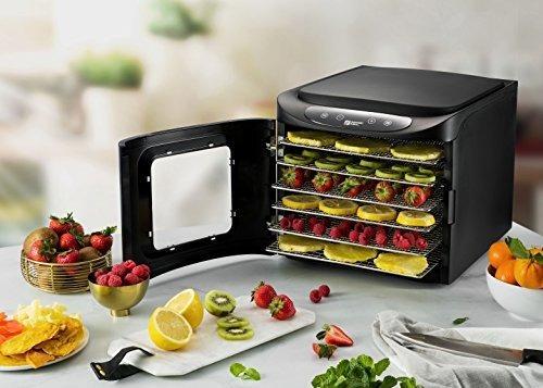 deshidratador de alimentos digital 6 bandeja magic mill 6101